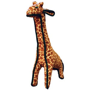 Tuffy - Zoo - Giraffe