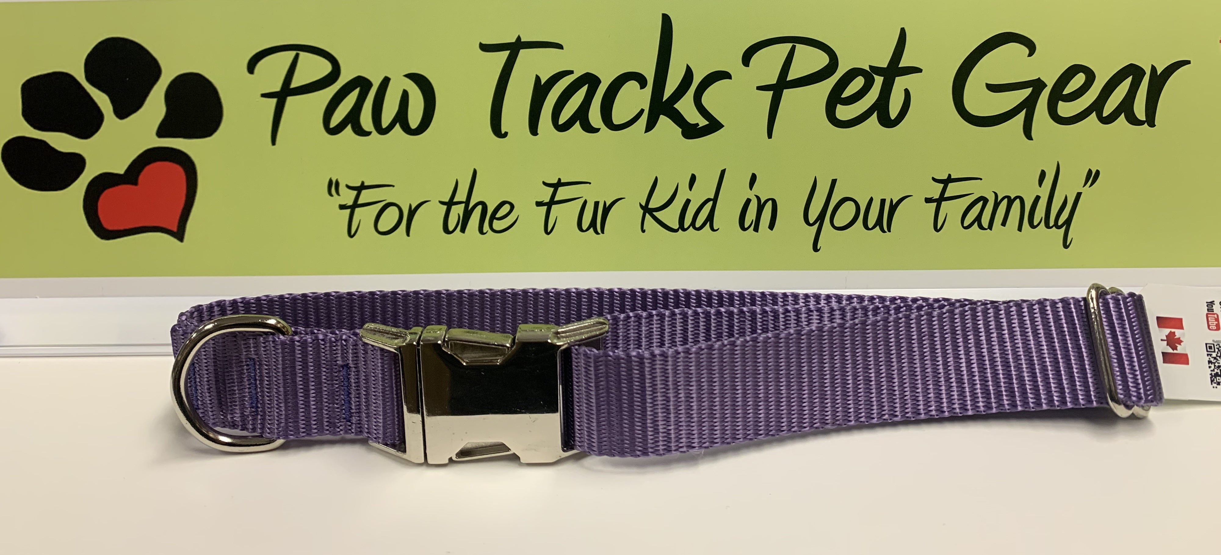 "1"" Metal Buckle Dog Collar (14-22"") - Purple"