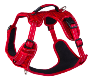 Large Fanbelt Explore Harness - Red