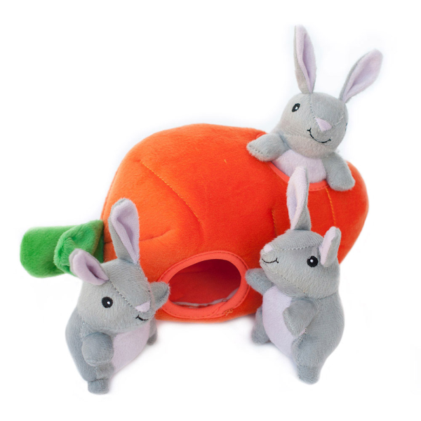Burrow Squeaker Toy Bunny & Carrot