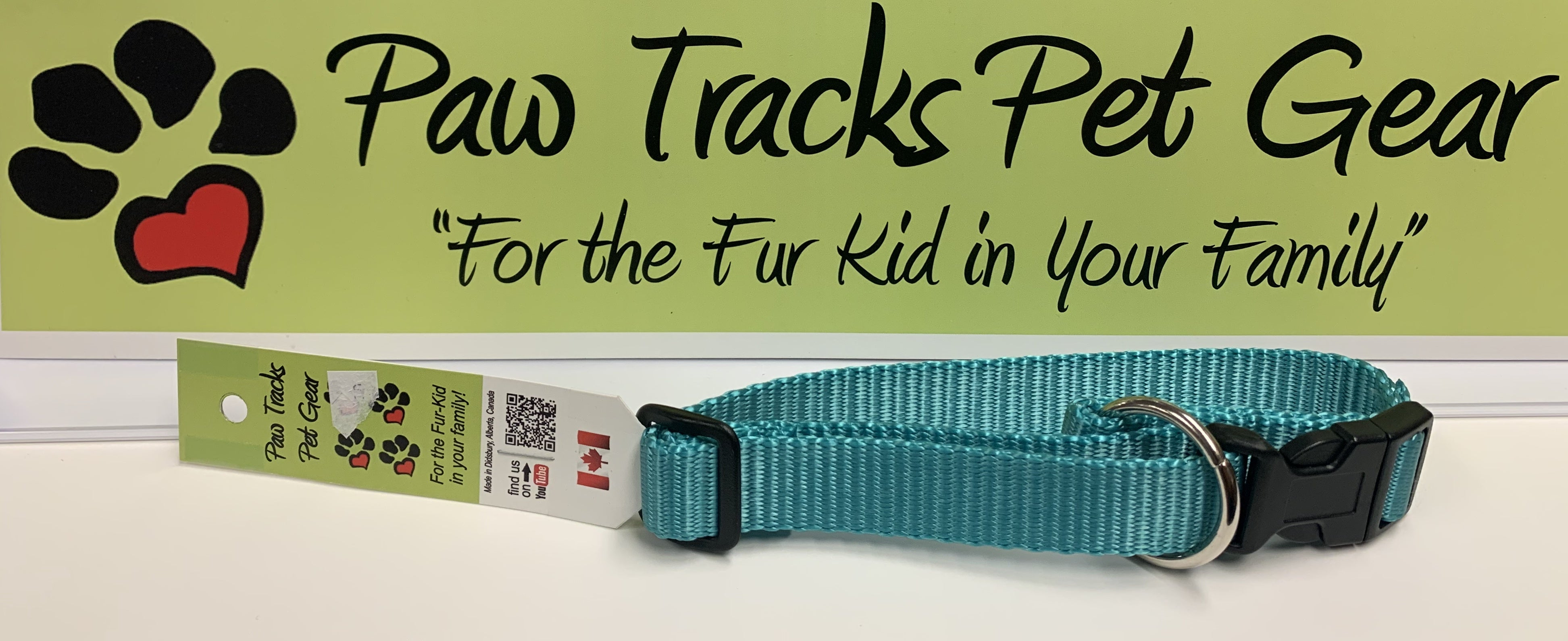 "1/2"" Dog Collar (9-18"") - Teal"