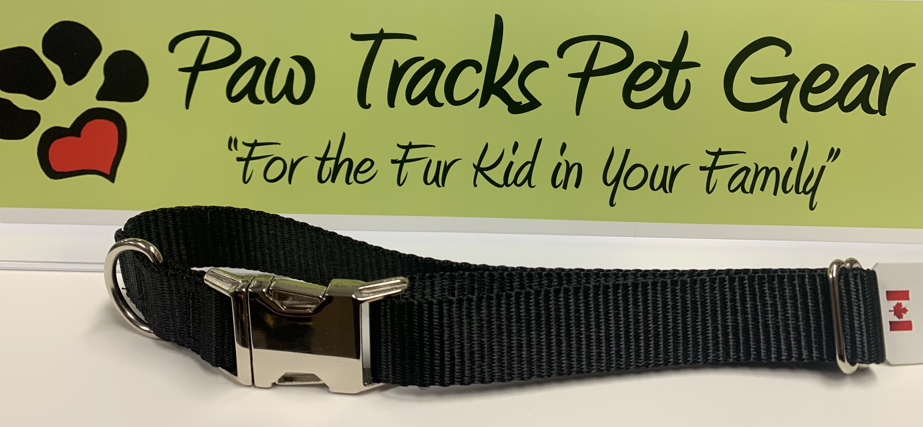 "1"" Metal Buckle Dog Collar (14-22"")  - Black"