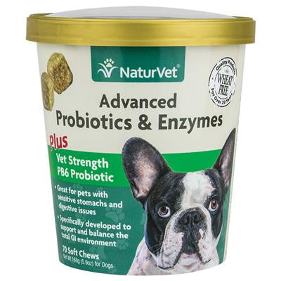 Soft Chew Advanced Probiotic & Enzymes 70CT