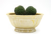 You Complete Me Twin Cacti
