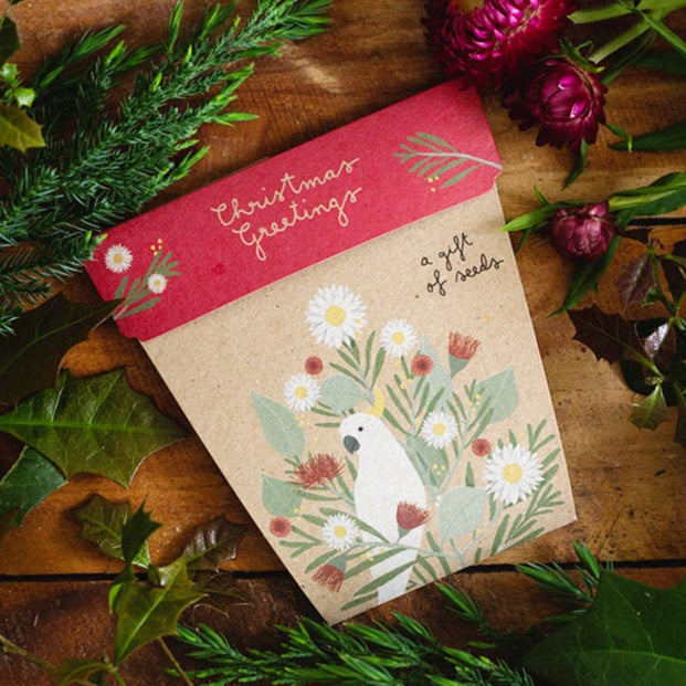 Sow 'n Sow Gift of Seeds - Christmas Greetings