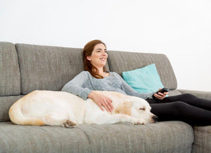10 Reasons Why Your Pets Are More Fun To Hang Out With Than Humans
