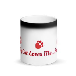 Pet Sitters Ireland Club Matte Black Magic Cat Mug