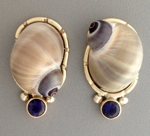 Moon Snail and Iolite Earrings