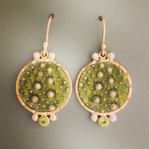 Urchin Slice Earrings