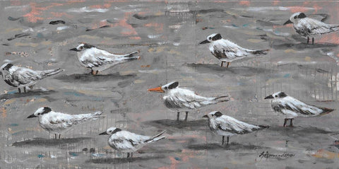 Royal Terns II