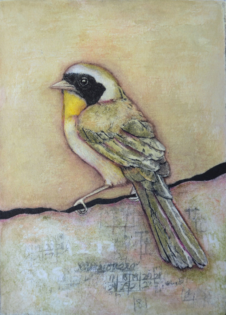 Rift No. 3 (Common Yellowthroat)