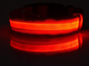 Glow-In-The-Dark LED Safety Collar BUY 1, GET 2 FREE