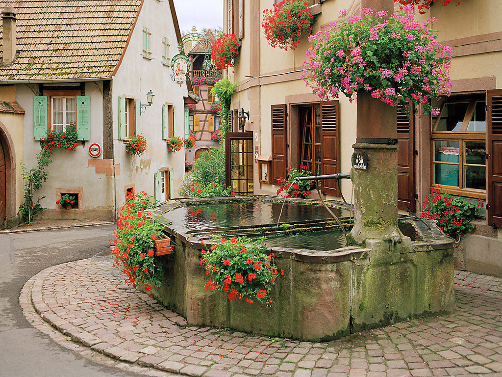 European Photo Of Street Fountain With Flowers In Alsace France