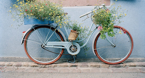 Blue Bike-Ribeauville(Alsace), France