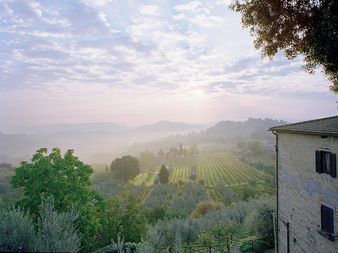 Farmhouse View II - Tuscany, Italy