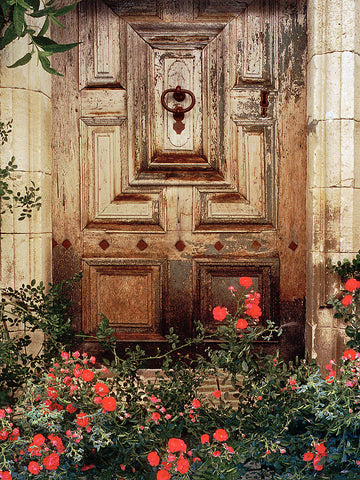 French Door with Roses - Provence, France