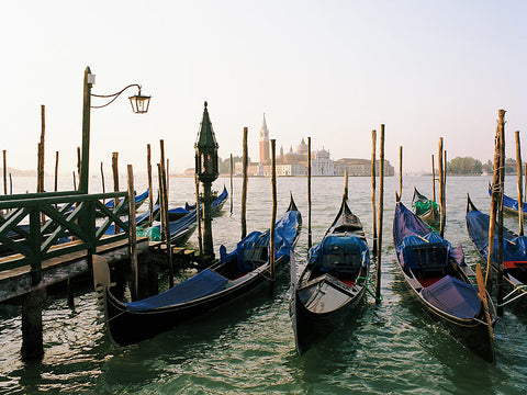 Gondolas at Dawn- Venice, Italy