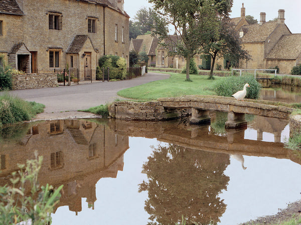 Goose Crossing- Lower Slaughter(Cotswolds), England