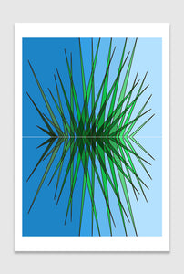 Pine Needles limited edition print designed by Spiros Baras.