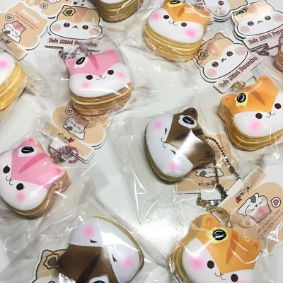 Poli Mini Pancakes Squishy - Bunnifulwishes