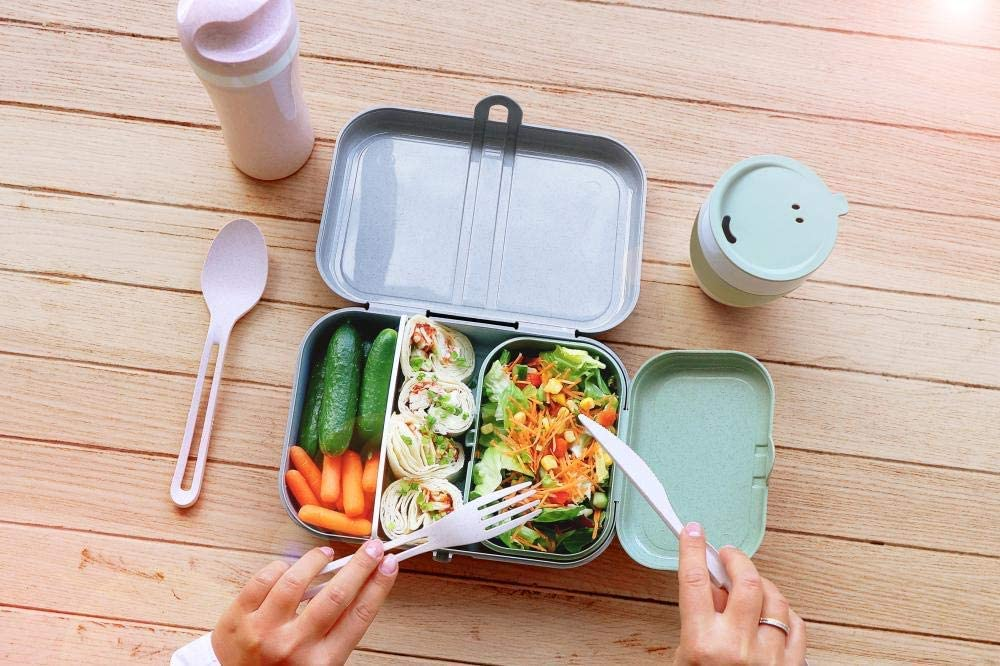 Tersus Lunch Box, thermoplastic, Organic Green, L