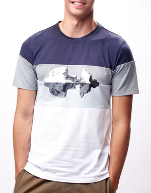 Blue and Grey Colorblock Printed Graphic T-Shirt