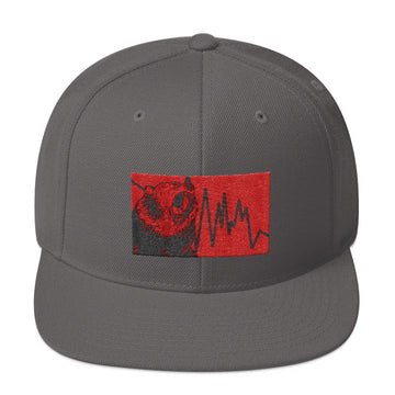 Snapback Hat - Bear Down
