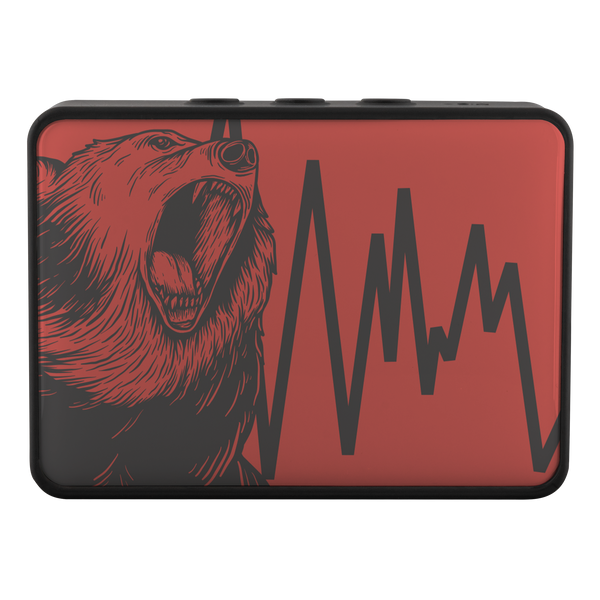 Bluetooth Speaker - Boxanne / Bear Down