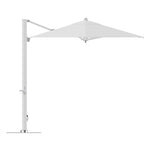8'x12' Cantilever Umbrella