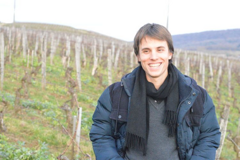 Valentin Morel in the vines