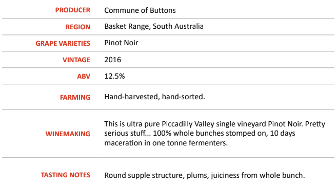Bonython 2016 - Commune of Buttons