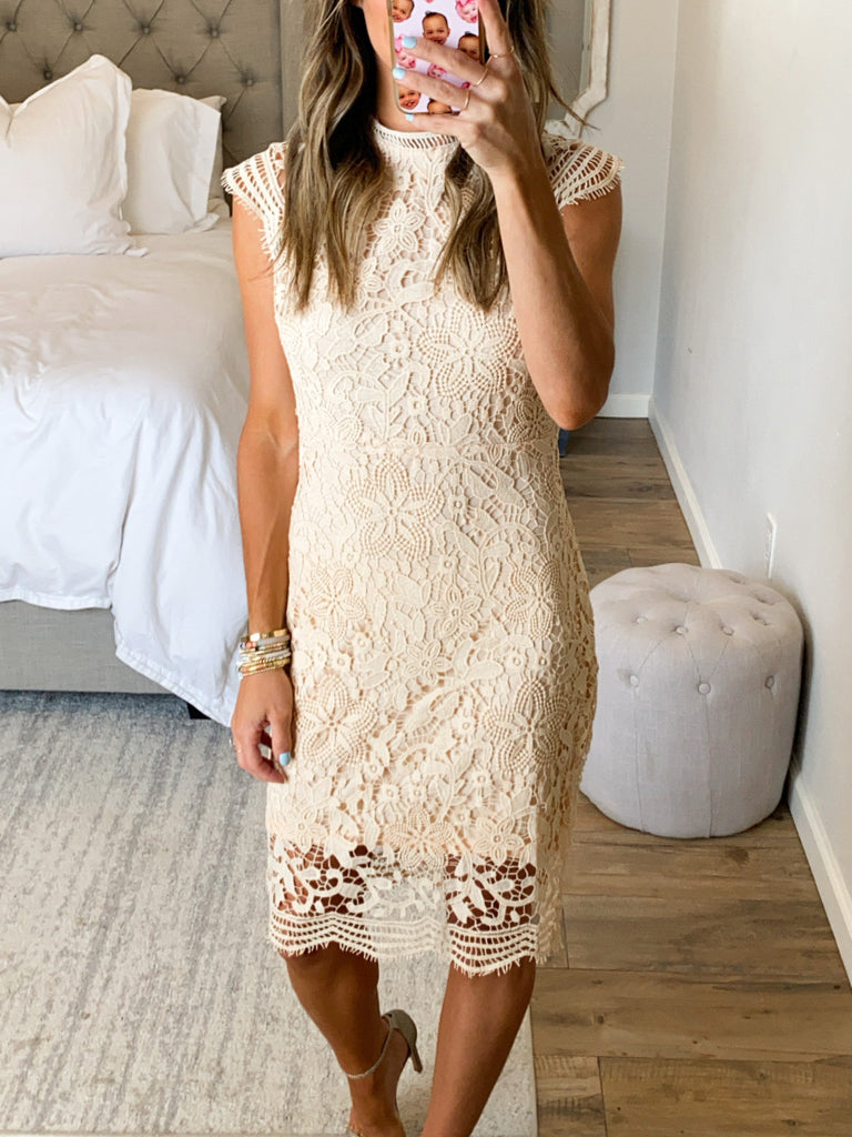 Emory Lace Dress | Blush