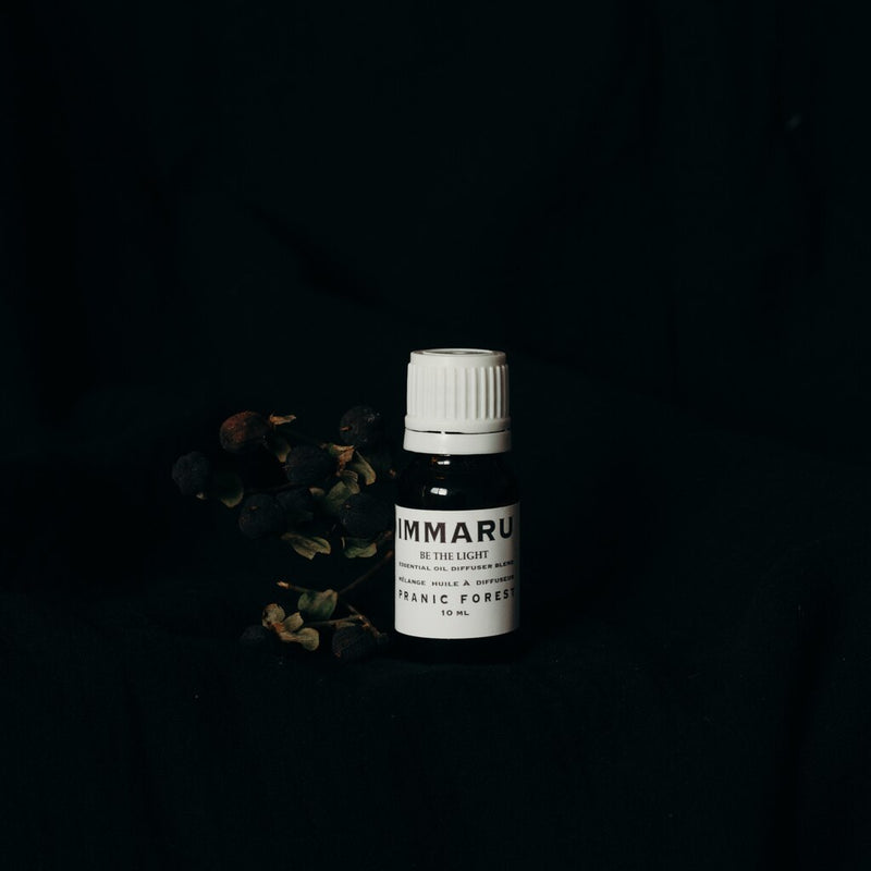 Pranic Forest  Immaru Essential Oil Blend - Anise Modern Apothecary