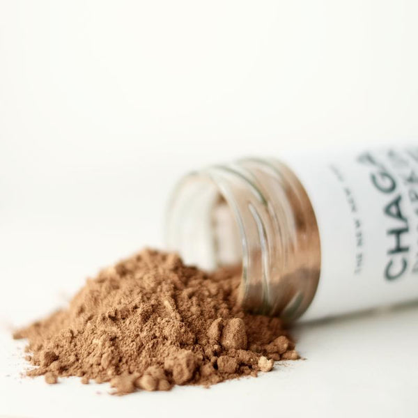 The New New Age - Chaga Pumpkin Spice - Anise Modern Apothecary