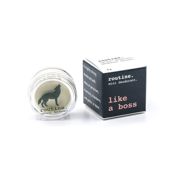 Routine. Natural Goods Like A Boss - Anise Modern Apothecary