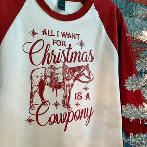 Cow pony Christmas - no wholesale available