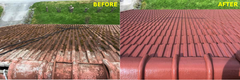 ECOCOAT® - Roof Coating