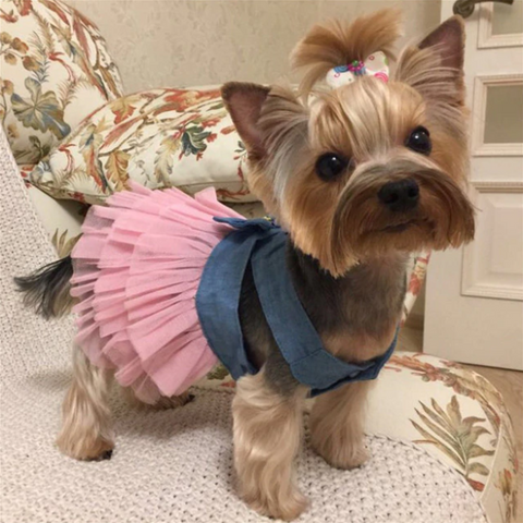 Summer Dog Dress Wedding Dress Skirt Puppy Clothing Spring Fashion Jean for Small Dogs - stanomy