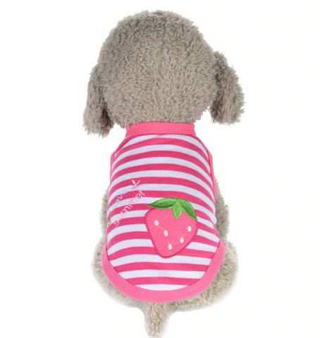 Autumn Strawberry Vest For Small Dog XXXS - S