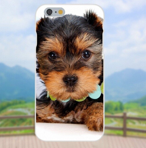 Soft Capa For Apple iPhone 4 4S 5 5C 5S SE 6 6S 7 8 Plus X XS Max XR Puppies Yorkie Dog - stanomy