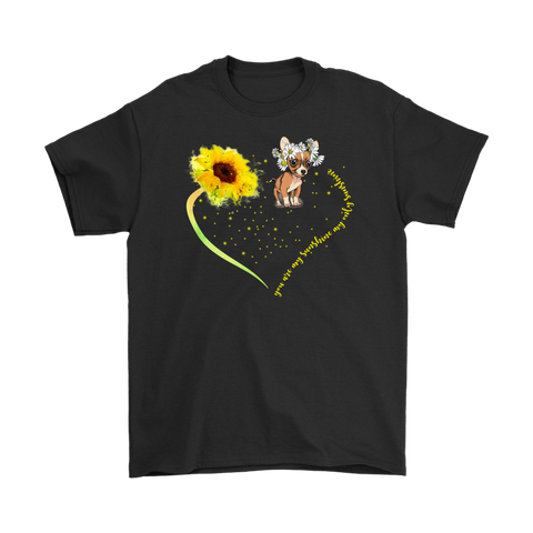 You Are My Sunshine My Only Sunshine Chihuahua - stanomy