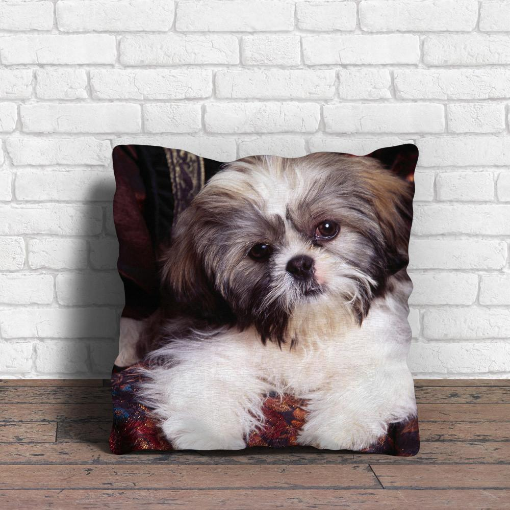 Cute Shih Tzu missing you Pillow - stanomy