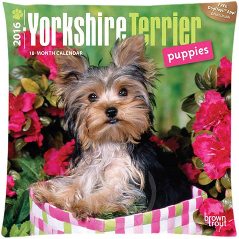 Custom Square Pillowcase yorkshire terrier soft Pillow Cover Zippered 1 - stanomy