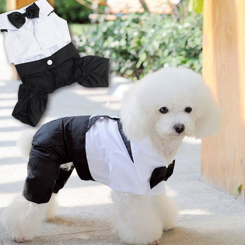 Dog Suits for Wedding Wedding Dress Clothes for Small Dogs Puppy Teddy Poodle Coat Pet Clothes Dog Accessories roupa cachorro - stanomy