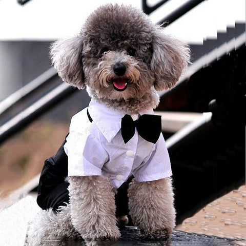 Dog Suits for Wedding Dogs Cat Clothes Clothing Prince Gentlemen Bow Tie Suit Wedding Party Costume Jumpsuit Coat For Chihuahua Puppy French Bulldog - stanomy