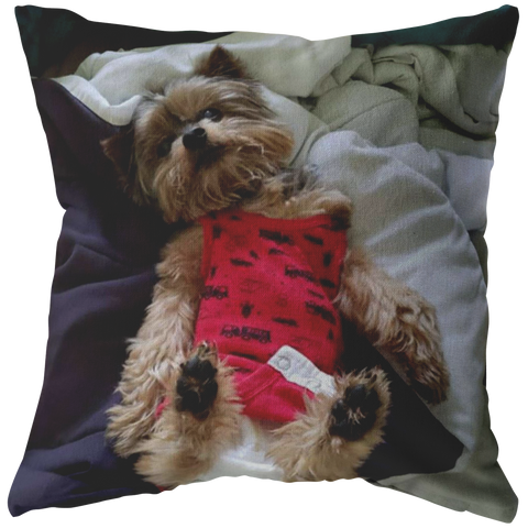 Cute Yorkie Pillow of KistyBrandon Powers - stanomy