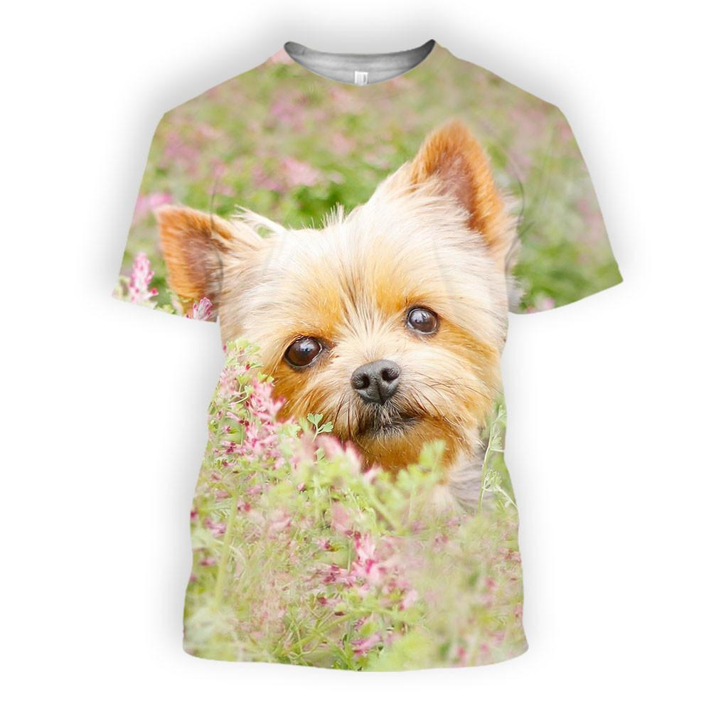 Yorkie in wild grass and flowers - stanomy