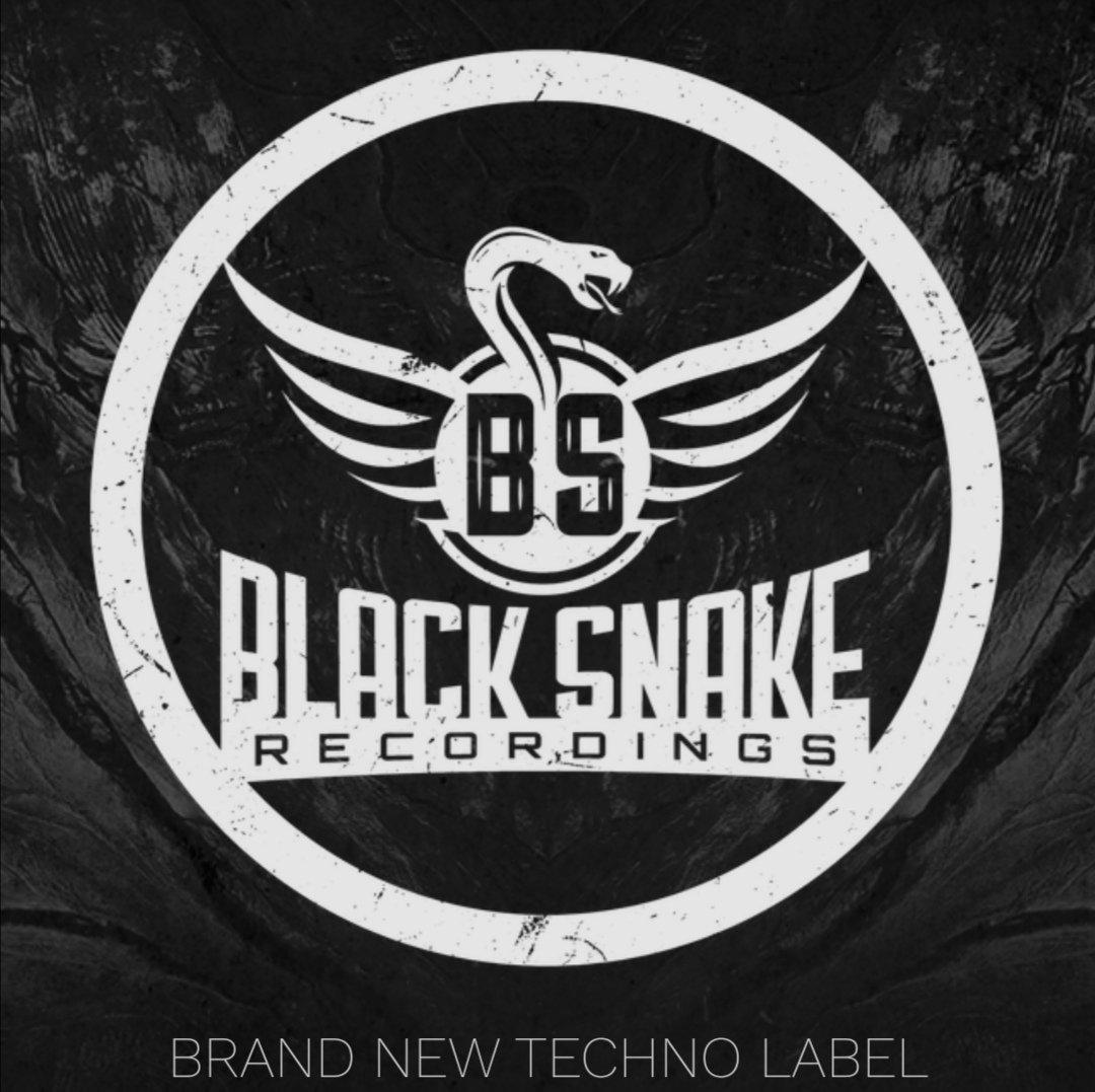 🔊BLACK SNAKE RECORDINGS -<> Label Showcase <>-