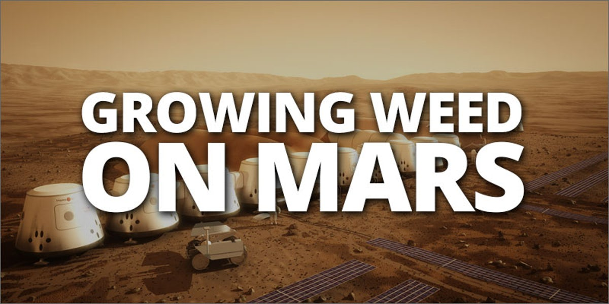 Growing on Mars - www.rave-on.shop