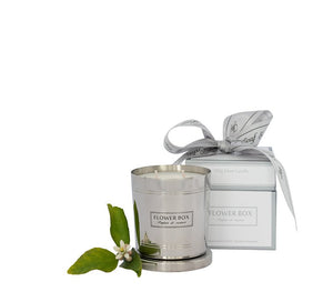 Fig Leaf & Cedar Flower Box 290gm Silver Candle